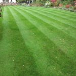 Lawn Treatments Barnston by LawnQuest