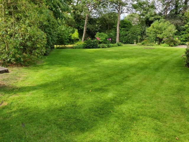 Lawn Treatment by LawnQuest
